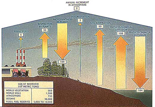 The Paleoclimate Record And Climate Models
