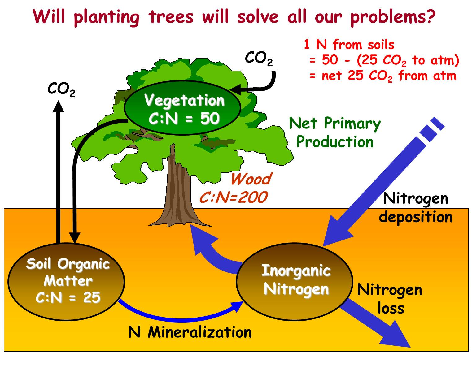 The global nitrogen cycle ratios of c to n in vegetation leaves wood and soils with respect to how much co2 can be withdrawn from the atmosphere in photosynthesis given inorganic pooptronica Images