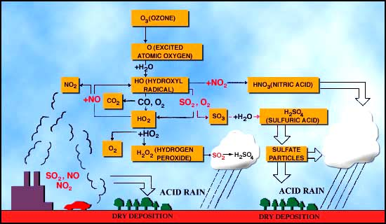 diagram of the pathways and reactions leading to the formation of acid rain  in our atmosphere
