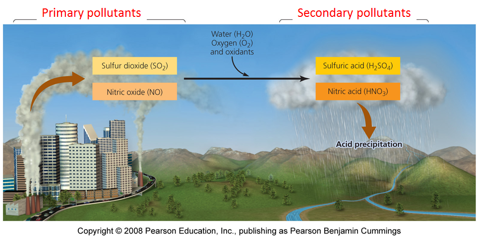 pollution, acid rain, and systems thinking