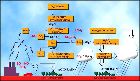 the global water and nitrogen cycles diagram acid rain acid rain diagram make