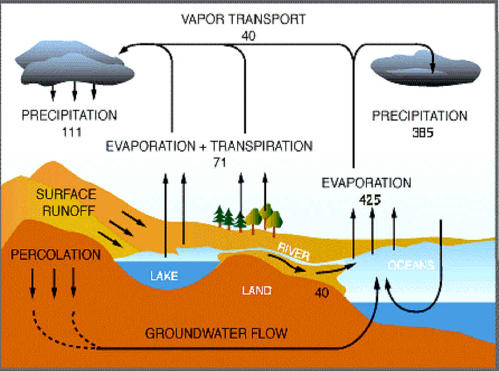 The Global Water And Nitrogen Cycles